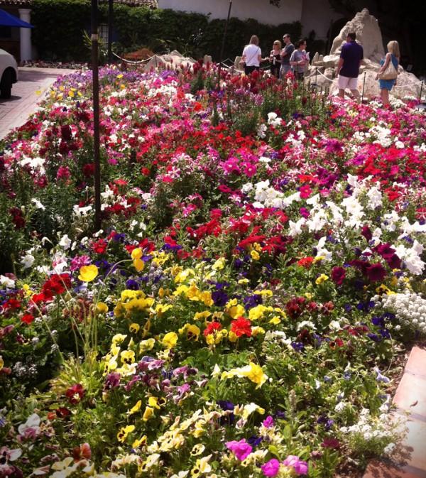laquinta_flowers02